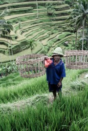 A worker shows off his weaved hats in rice terraces near Ubud, Indonesia.